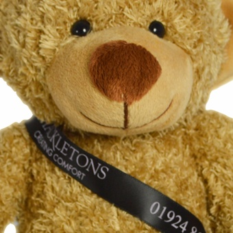 20cm-barney-bear-biscuit-sash-clup-1024