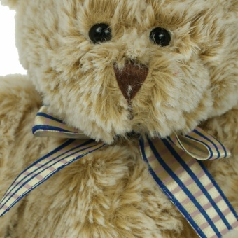 20cm-fudge-plain-closeup-1024