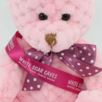 quilted-bear-candyfloss-sash-clup-1024