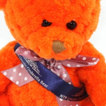 quilted-bear-pumpkin-sash-clup-1024
