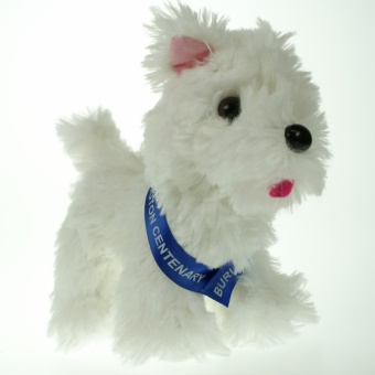 15cm Scottie sash White